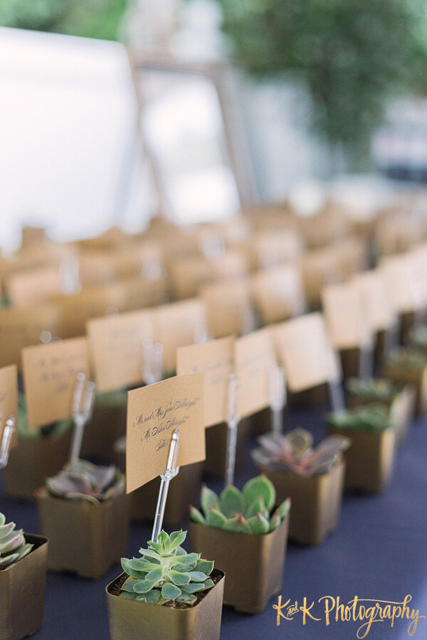 Events by special moments – tammy waterman- master wedding planner – Tampa wedding planner – most asked wedding planning questions- escort cards with succulents