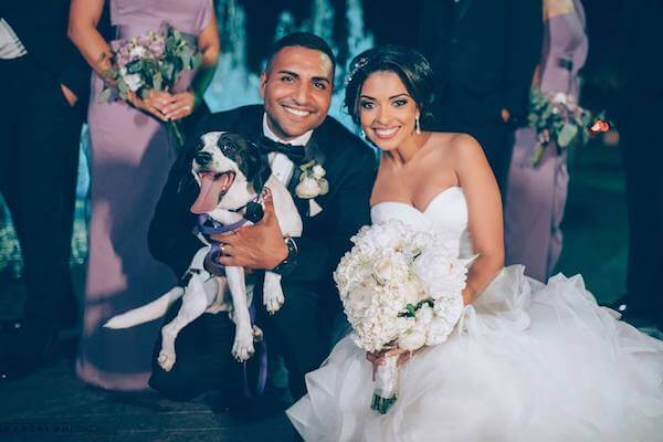 bride and groom stopped for some photos with their dog - incorporating your dog in your wedding day