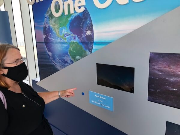 Tammy Waterman - St Pete Pier - Tampa Bay Watch - Tampa Bay Watch Discovery Center - One Planet One Ocean