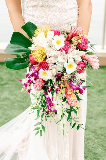 Clearwater Beach bride's cascading bridal bouquet filled with pin cushion protea orchids and ginger