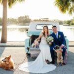 bride and groom sitting on the back of a vintage pickup truck with rescue dogs they had up for adoption at their Saint Petersburg Florida wedding