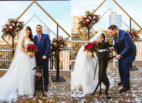 bride and groom posing for photos with their puppy after their downtown St Pete Rooftop wedding