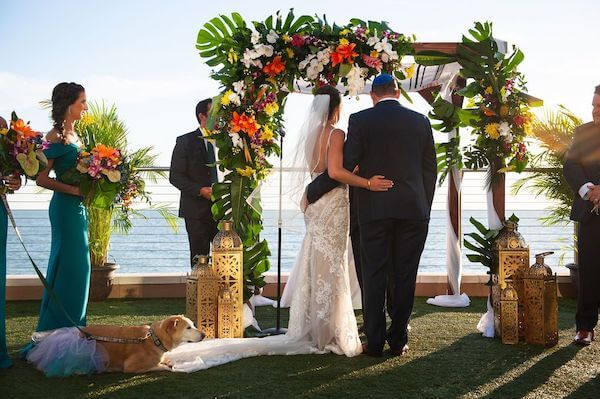bride and groom exchanging wedding vows under a cuppa of bright tropical colors as their dog lays quietly by watching