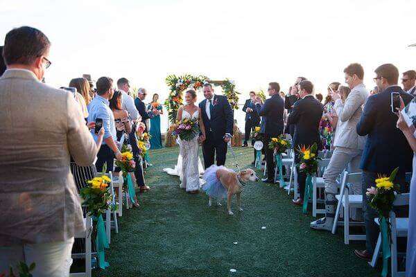 bride and groom with their dog at the end of their wedding ceremony